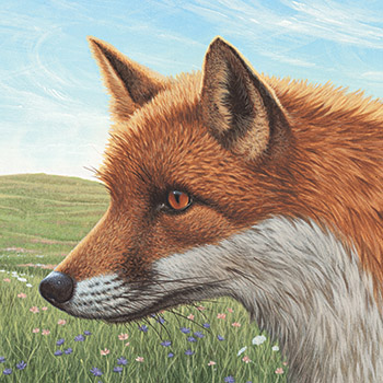 Illustration by RICHARD COWDREY