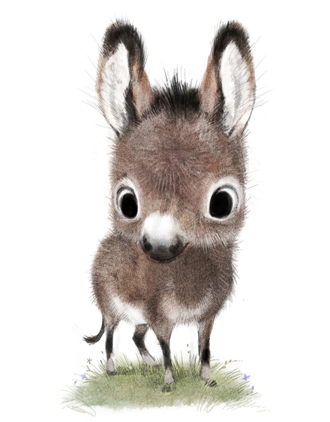 Sydney Hanson Children S Book Illustrator And Production