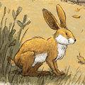 Illustration by JED HENRY