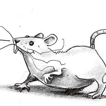 Illustration by MATT LOVERIDGE