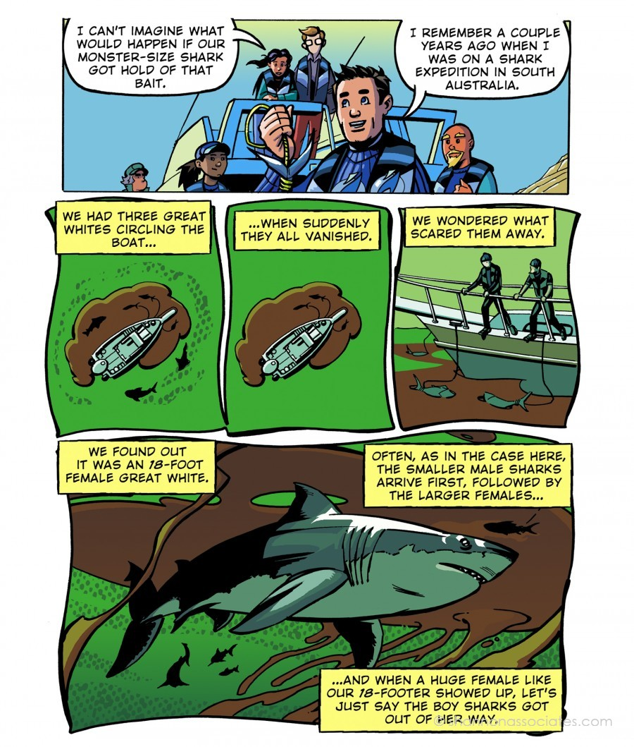 JOE ST.PIERRE: Illustration, Graphic Novel Artist, Comic